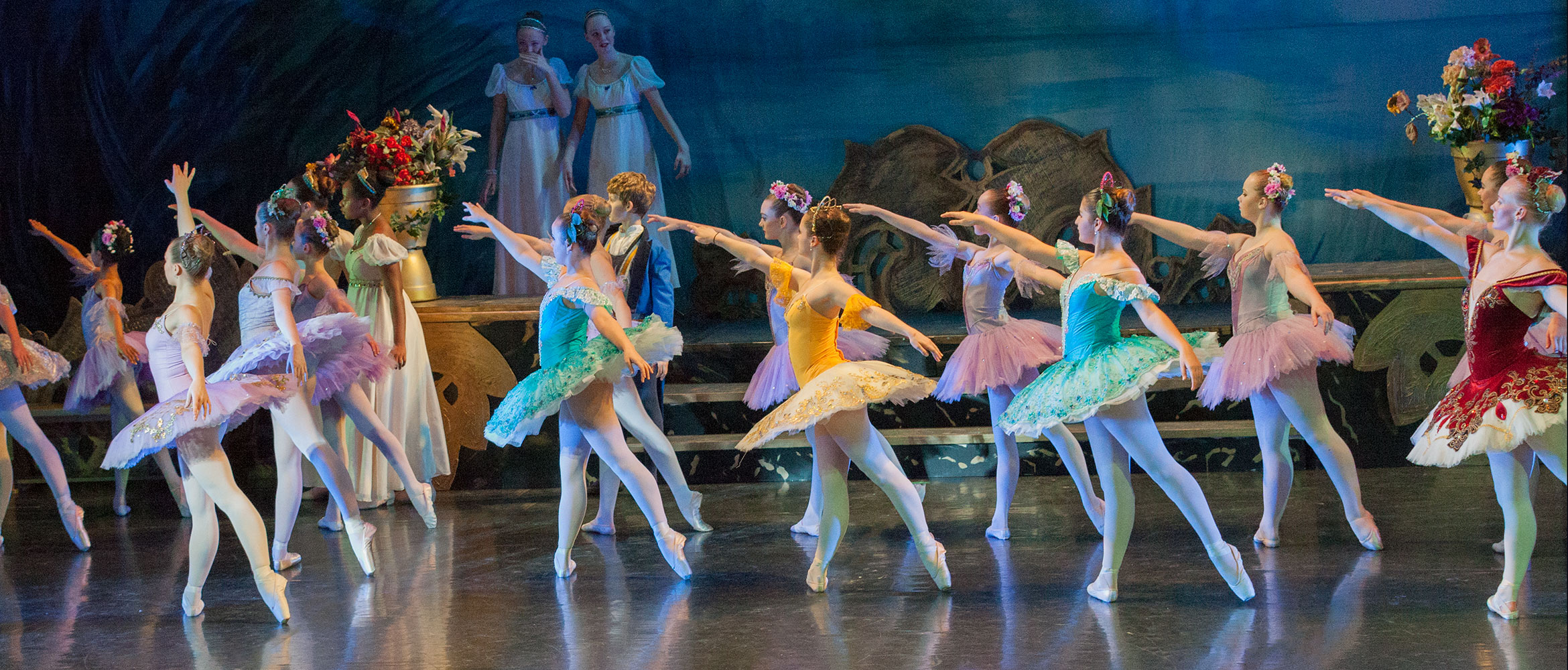 image from The Sleeping Beauty, 2017 production